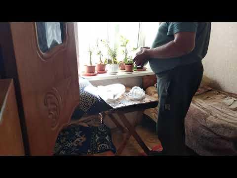 Семена баклажан Меч Самурая от ООО Green Agro