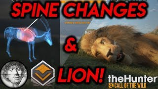 Interrupted by a DIAMOND Lion! Spinal Chord & Quick Kill Changes [TheHunter: Call of the Wild 2019]
