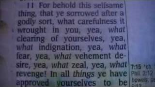 2 Corinthians 7 Holy Bible (King James)