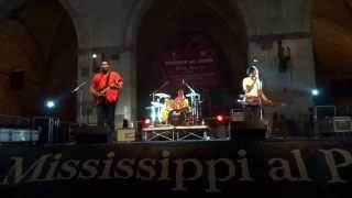 Homemade Jamz Blues Band concert in Piacenza - Italia (27 giugno 2015) (5)