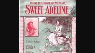 Haydn Quartet - Sweet Adeline (You