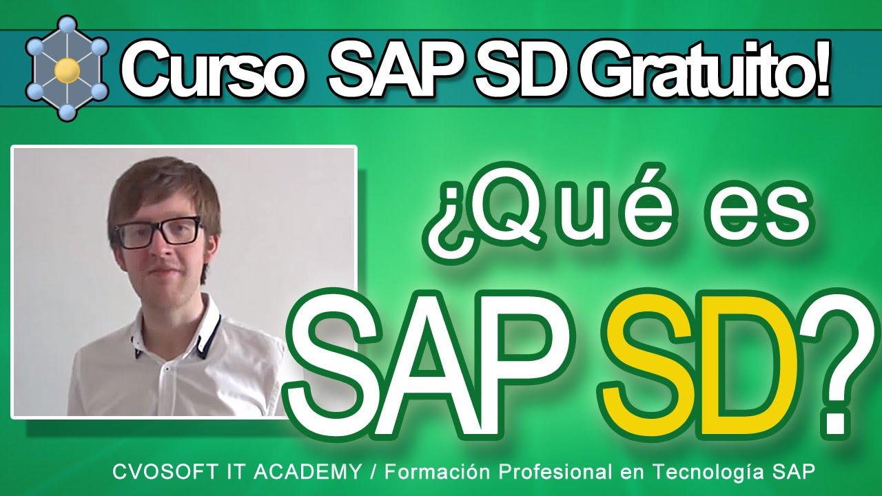 Curso Sap Sd Gratuito Introducción Al Módulo Ventas Y Distribución Del Sistema Sap