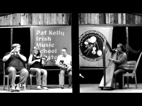 Irish Music School Elmstein 2014  - Teacher's Concert  (1)