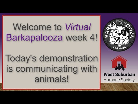 Virtual Barkapalooza 2020 - Animal Communicator demonstration