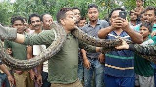 Python tries to strangle West Bengal selfie taker: BBC News Telugu