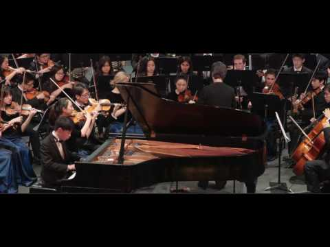Concerto in a minor, op. 16 - Edward Grieg