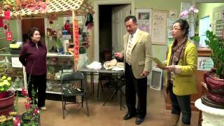 Mc Viet Thao-cbl (233)- Tea Garden Nursery In Arlington- Texas- ChuyỆn BÊn LỀ- Feb 24, 2014