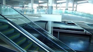 アキーラさん利用①スペイン・マドリッド・アトーチャ駅!2004年爆破テロ被害駅,Atocha-station,Madrid,Spain