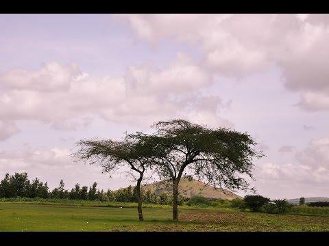 WELCOME TO TANZANIA | ARUSHA, TANZANIA