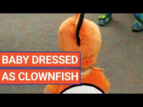 Cute Baby Dressed In A Fish Costume Video 2016 | Daily Heart Beat