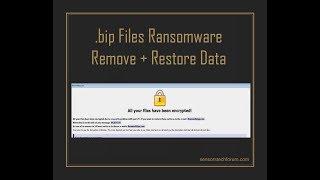 .bip Files Virus Dharma   How to Remove + Restore Data