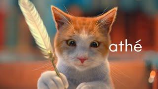 [ATHE]고양이가 립밤광고에 왜나와?