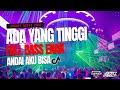 Ada Yang Tinggi !! DJ Andai Aku Bisa Full Bass 2021 DJ Evolusi X Ivan Rey Omega