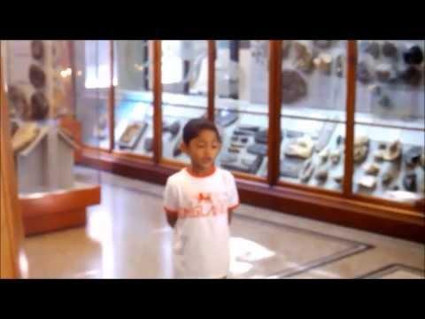 Labib Meets..Stan The Tyrannosaurus Rex At Manchester Museum.