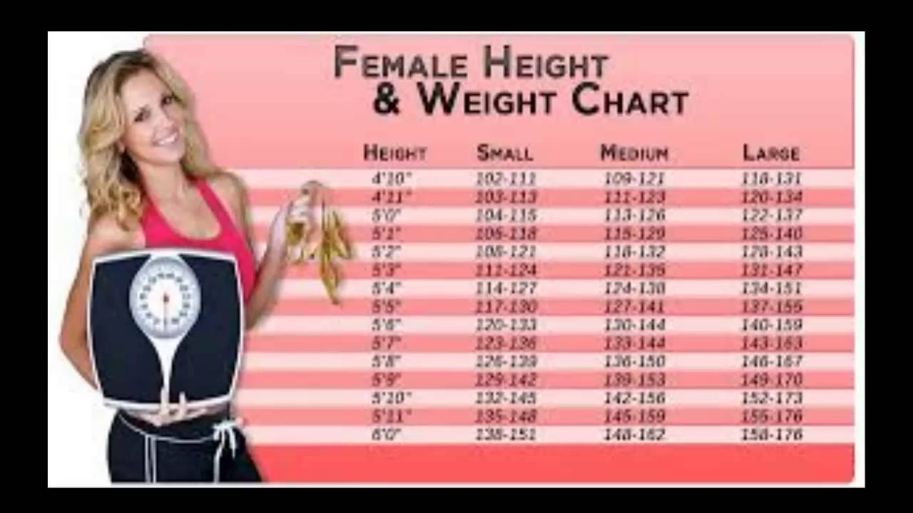Height and weight chart youtube height and weight chart nvjuhfo Images