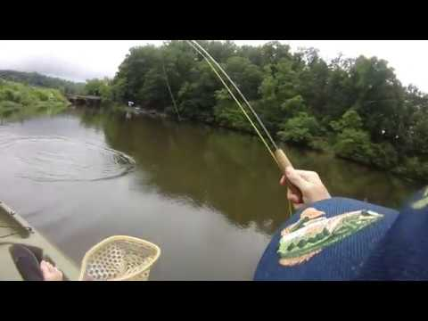 Virginia Fly Fishing - Rivanna Reservoir Largemouth