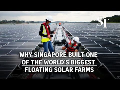 Why Singapore built one of the world's biggest floating solar farms