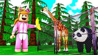 I AM ADOPTING ALL THE ANIMALS // Roblox Feed your Pets // Roblox Creating My Own Zoo