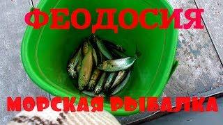 Феодосия Крым! Морская рыбалка! Бархатный сезон.