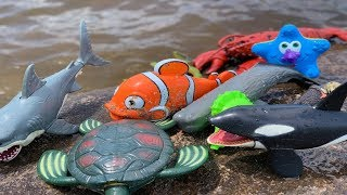 Sea Animal Toys This Summer at the Shore