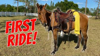 Riding My Horse For THE FIRST TIME EVER!