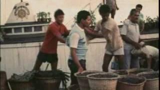 Ver-o-Peso (1984)
