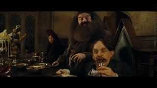V bradavicích ( Harry Potter ) CZ parody