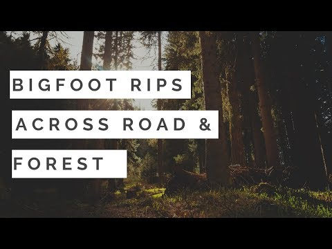 Bigfoot Rips Across Road & Forest  🙉Best Of SFSO