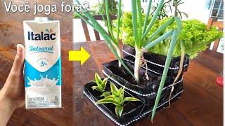 Você joga Caixas de leite fora? Aprenda a fazer jardineira reciclada