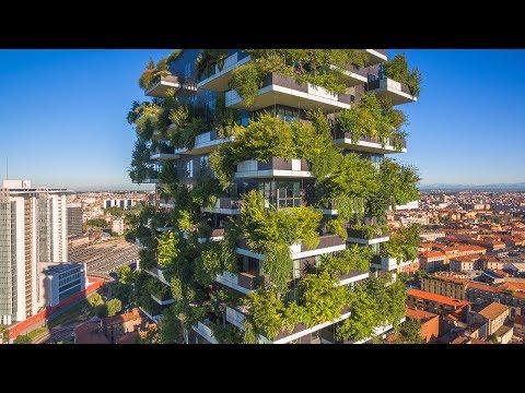 When Trees Meet Buildings