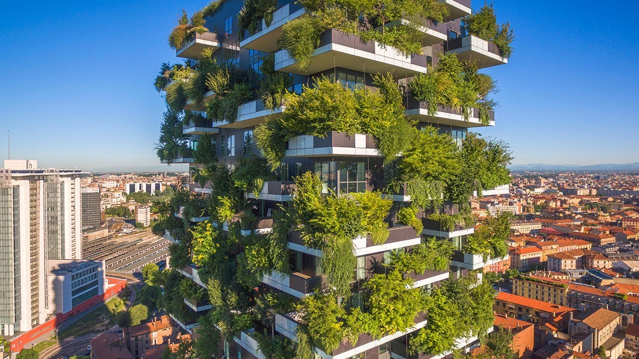 when-trees-meet-buildings-the-b1m