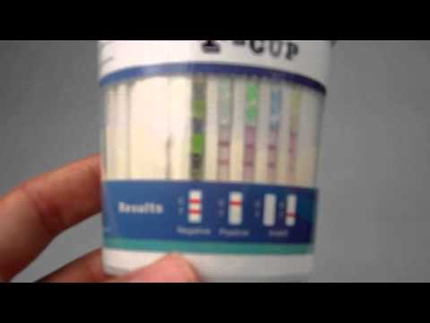 T Cup drug test results