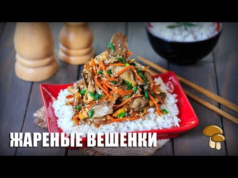 Картошка с грибами в сметане: рецепты для духовки