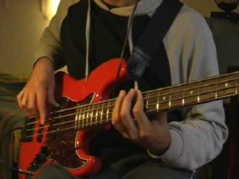 Torture me - Red Hot Chili Peppers bass cover