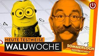 ProSieben will GEZ und Taubers Twitter Terror WALUWOCHE