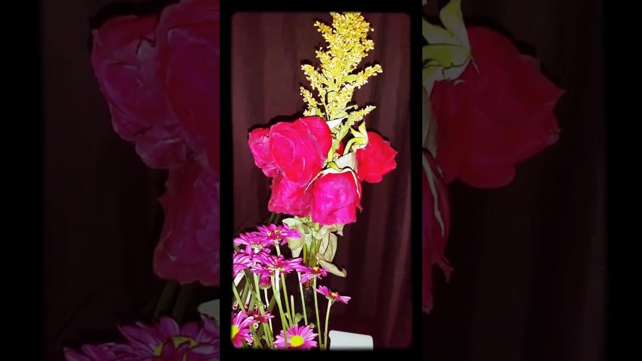 Family roses addams morticia cutting Morticia Addams,
