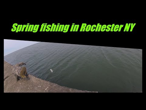 Spring Perch  Fishing In Rochester New York