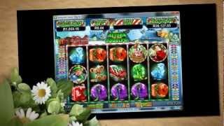 Springbok Casino Slots(, 2012-05-02T10:09:45.000Z)