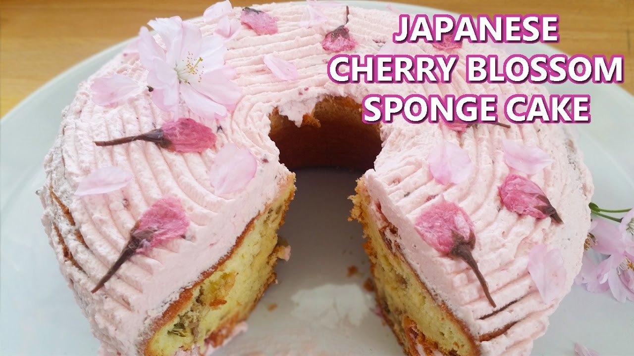 Japanese Sponge Cake Recipe Youtube: CHERRY BLOSSOM SAKURA SPONGE CAKE WITH AUTHENTIC SAKURA