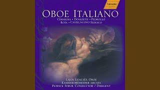 Concerto da camera, Op. 146a: II. Tempo di Giga