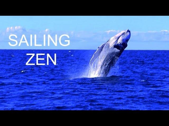 Here is some relaxing Zen!