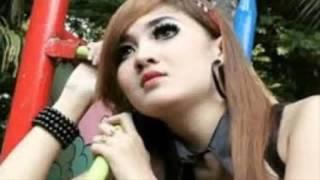 Nella Kharisma   Bintang Kehidupan   OM Arwana