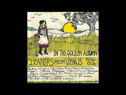 Cleaners from Venus - In the Golden Autumn (1983) Mp3