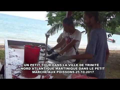UN PETIT TOUR DANS LA VILLE DE TRINITÉ NORD ATLANTIQUE MARTINIQUE DANS LE PETIT MARCHÉ AUX POISSONS