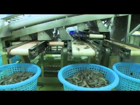 Official Marketing Video of Blue Archipelago Berhad