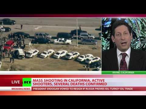 Brian Levin Discusses San Bernardino Shooting on RT International