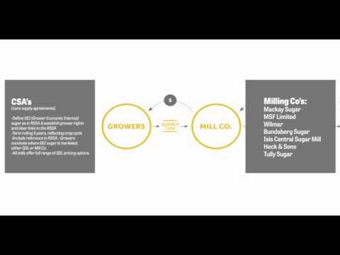 Pathways to Market for Grower Economic Interest (GEI) Sugar explained