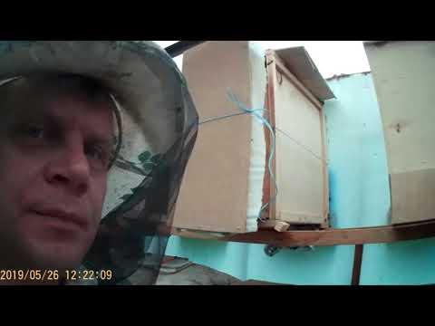 Ревизия пакетов, купленных на Краснополянской Опытной Станции Пчеловодства