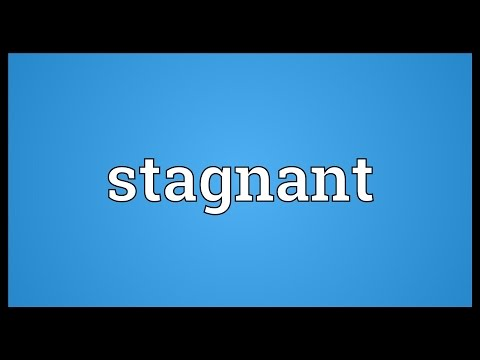 Stagnant Meaning