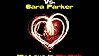 Jas Van Houten Vs Sara Parker My Love Is Din Dah ProHasca Remix